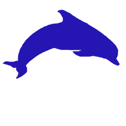 Blue Dolphin Research and Consulting